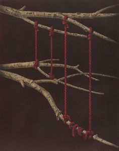 The Mezzotints of Hamanishi Katsunori Print Artist, Artist Painting, Painting & Drawing, Intaglio Printmaking, Art Institute Of Chicago, Italian Artist, Affordable Art, Textiles, Tree Art