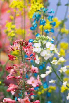 Find out about the horticultural issues that matter