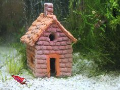 Garnelen Siedlungshaus Nano - Haus Versteck Aquarium Fische - www.AquaThier.de   eBay