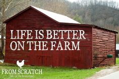 We could have never had a better childhood if it hadn't been for life on the farm!