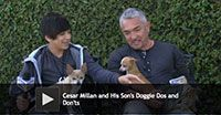 Cesar Millan and His Son's Doggie Dos and Don'ts