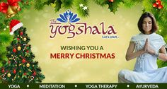 Ayurvedic Clinic, Ayurvedic Therapy, Christmas Wishes, Merry Christmas, Ayurvedic Doctor, Yoga Courses, Joy And Happiness, Grand Opening