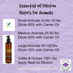 Are Essential Oils Safe, Doterra Essential Oils, Oils For Dogs, Dog Products, Large Animals, Carrier Oils, Natural Solutions, Beetles, Pet Stuff