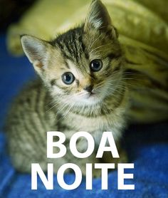 www.boa noite.com | Boa Noiteee....s2