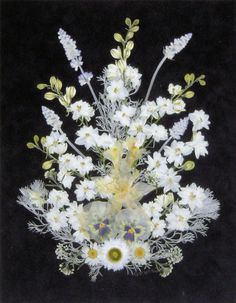 White_Arrangement.jpg (467×600)