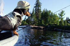 wiener-dog-fisherman-costume