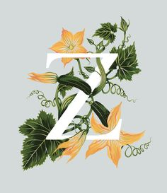An A-Z of Edible Flowers on Behance