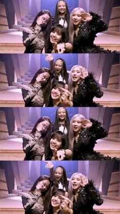 Wallpaper Rose, Lisa Blackpink Wallpaper, Kpop Girl Groups, Kpop Girls, Blackpink Poster, Chica Cool, Blackpink Funny, Blackpink Memes, Blackpink Video