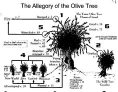 allegory of olive tree
