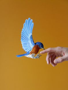 Lifelike paper birds by Diana Beltran Herrera -- see some of them here: http://www.thisiscolossal.com/2014/07/new-lifelike-paper-birds-by-diana-beltran-herrera/