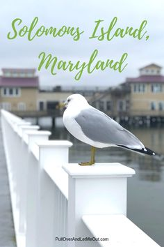 Solomons Island, Maryland is a charming waterfront town located on the Patuxent River where it meeets iwth the Chesapeake Bay. Romantic Weekend Getaways, Romantic Vacations, Romantic Getaway, Romantic Travel, Weekend Trips, Vacation Trips, Day Trips, Vacation Outfits, Vacation Spots