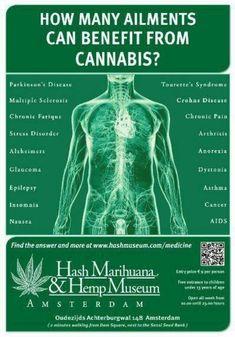 #Marijuana Legal CBD Oil in 50 States- Will Not Show in Drug Test