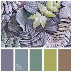 IN COLOR BALANCE | Shade