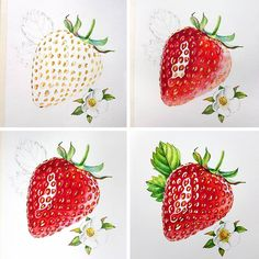 This strawberry unexpectedly became my most popular image here on . Thank you! So I thought that sharing the process could be Watercolor Painting Techniques, Watercolour Tutorials, Watercolour Painting, Painting & Drawing, Watercolors, Watercolor Fruit, Fruit Painting, Color Pencil Art, Fruit Art