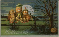 Pumpkin Creatures Sitting on a Fence at Night with Black Cat / B.