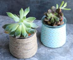 Repurpose those glass yogurt jars by turning them into something beautiful! These DIY Succulent Planters are adorable and the perfect size! Crafts With Glass Jars, Mason Jar Crafts, Mason Jar Diy, Succulent Planter Diy, Diy Planters, Succulents Diy, Plants In Jars, Yankee Candle Jars, Jar Art