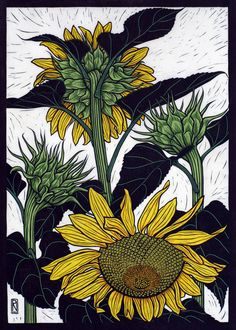 Exotic Flowers 2 - Linocuts — Rachel Newling