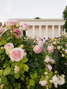 Vienna Theseus Temple