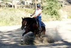 ~ ~ Reining Training Tips ~ ~: Teaching the Sliding Stop