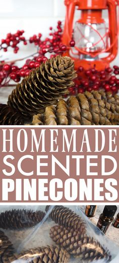 DIY Scented Pinecones   The Creek Line House   Natural Solutions Crafts For Teens To Make, Diy And Crafts, Decor Crafts, Yule, Scented Pinecones, Pine Cone Decorations, Christmas Decorations, Pine Cone Crafts, Natural Solutions