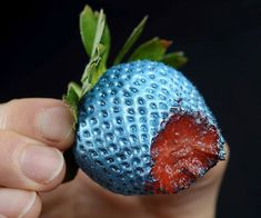 Edible spray paint for food. Looks cool. Don't know about taste or safety. Edible Spray Paint, Futuristic Party, Hunger Games Party, Creme Anti Rides, Blue Strawberry, Blue Berry, Strawberry Plants, Blue Green, Alien Party