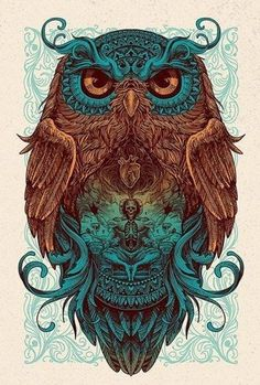 Цветной эскиз совы