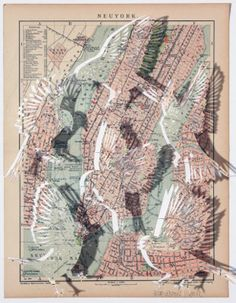 Claire Brewster - Seeking an answer Cut out birds from old maps