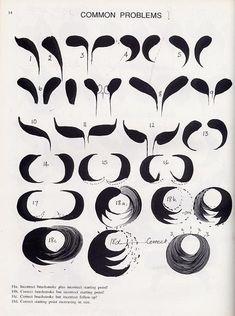 One Stroke - Oksana Volkova - Picasa Web Albums One Stroke Painting, Tole Painting, Fabric Painting, Diy Painting, Painting & Drawing, Drawing Lessons, Painting Lessons, Painting Techniques, Art Lessons