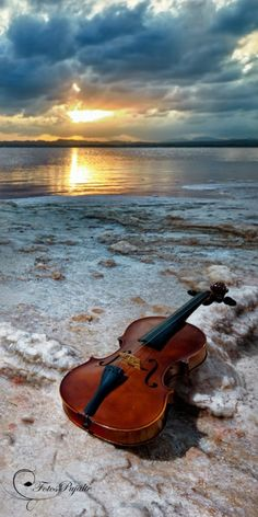In a Perfect World. Music Pictures, Nature Pictures, Beautiful Pictures, Violin Art, Violin Music, Violin Painting, Violin Instrument, Violin Photography, Nature Photography