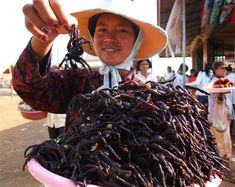 Fried Spider --  10 Most Odd and Bizarre Food in World People Eat http://www.buzzodd.com/10-most-odd-bizarre-foods-world-people-eat/
