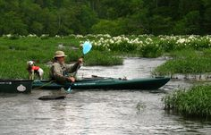 Kayaking with the Cahaba Lilies