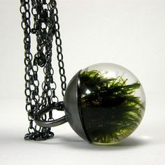 people always stop me and ask where my creepy moss necklace came from. love this etsy shop.