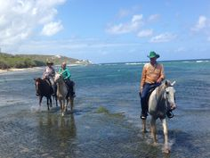 Exploring On Horseback, Fun With Horses, Riding In The Ocean #HorseColicSymptomsFree http://www.loveyour.horse