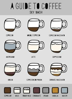 A Guide To Coffee -