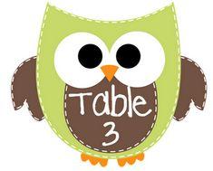 Owl themed classroom set TPT