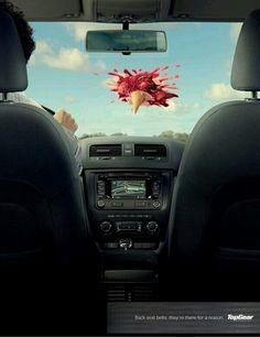 Back seat belt