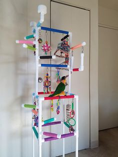 Great Pic caique parrot Strategies Keeping ones feathered companion healthy and balanced usually means often managing their particular health. Parakeet Toys, Parakeet Cage, Diy Cockatiel Toys, Fancy Parakeet, Green Parakeet, Cockatiel Cage, Conure Cage, Conure Bird, Bird Play Gym