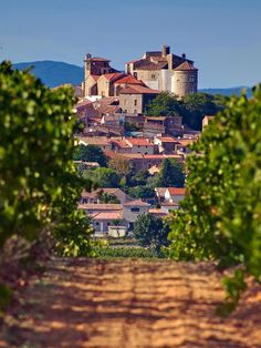 Perched on an isolated hill, de Chateau Puissalicon (11th century) in Puissalicon, Languedoc-Roussillon_ France