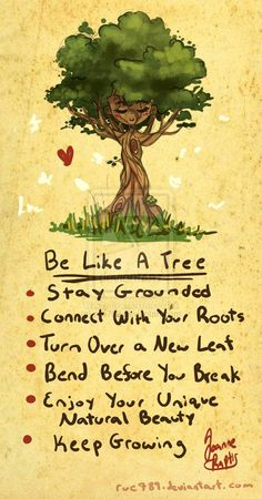 Advice from a tree :)
