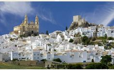 Spain-Small Group Journey 2016  Begin your exploration of central and southern Spain with an extensive tour of Madrid. Step back in time walking through historic Toledo. Admire the exquisite Alhambra Palace in Granada, sample local tapas in Seville and marvel at the architectural wonders of Cordoba.