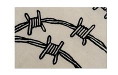 Barbed wire #Brilliant contrast between the softness of wool and silk of the rug and the concept of barbed wire, hard and piercing. http://nodusrug.it/it/collezione_tappeti_scheda.php?ID=BWIRE