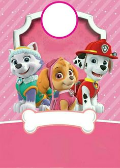 Girls Paw Patrol Cake, Sky Paw Patrol, Paw Patrol Badge, Paw Patrol Toys, Third Birthday Girl, Girl Birthday Cards, Bday Cards, 2nd Birthday Parties, Paw Patrol Birthday Theme