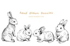 Check out Easter Bunnies, Doodle Clipart by swiejko on Creative Market