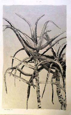 Title: Aloe II, Le Franschhoek Hotel Medium: Mixed Media on Hahnemühle Cotton Paper: Chalk Pastel, Drawing Ink, Oil paint Size: 1189 x 841mm Etchings, Ink Painting, Succulents, Artsy, Van, Medium, Drawings, Animals, Animales
