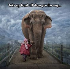 Little Girl And Her Elephant Friend - The Meta Picture