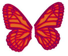 Image result for butterfly wings template