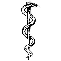 Like this but the can be black and the snake be a greenish color like in the mythology
