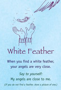 Feathers are Angels way to connect with you!