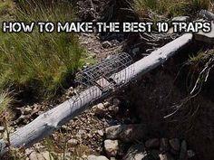 How To Make The Best 10 Traps - SHTF Preparedness