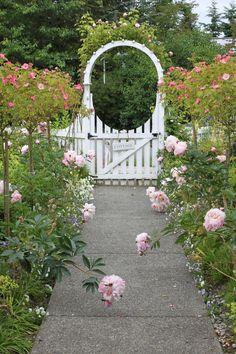 Cottage Walkway in Bloom